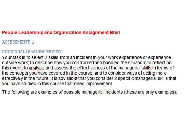 People Leadership Organization Assignment Brief