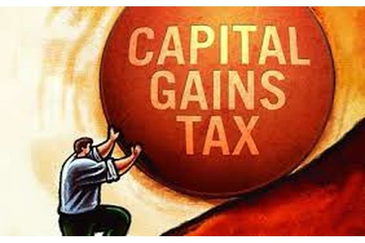 Capital Taxation Theories Assignment Help