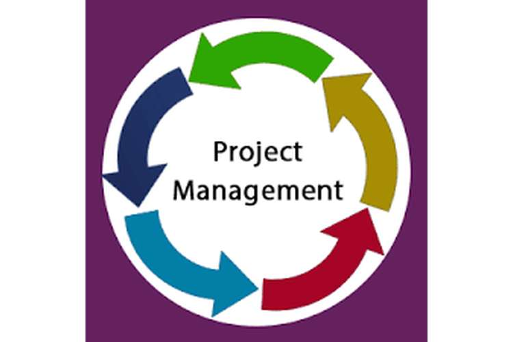 Business Project Management Assignment Solution