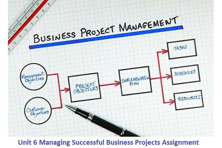 Unit 6 Managing Successful Business Projects Assignment