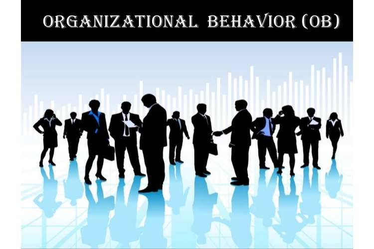 Organisational Behaviour Assignment Help