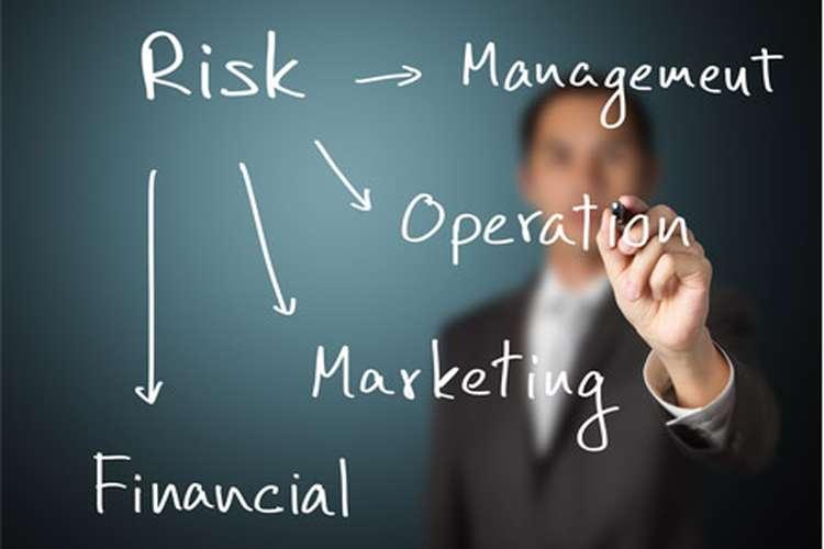 BSBRSK501 Manage Risk Diploma Assessment