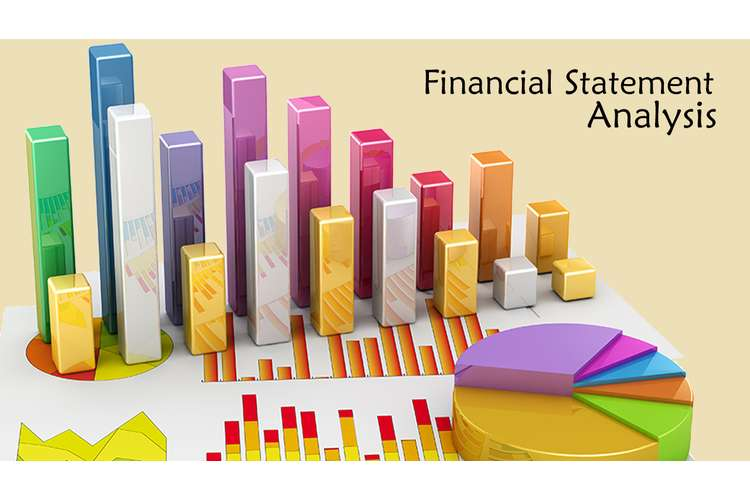 Financial Statement Analysis Assignment Solution