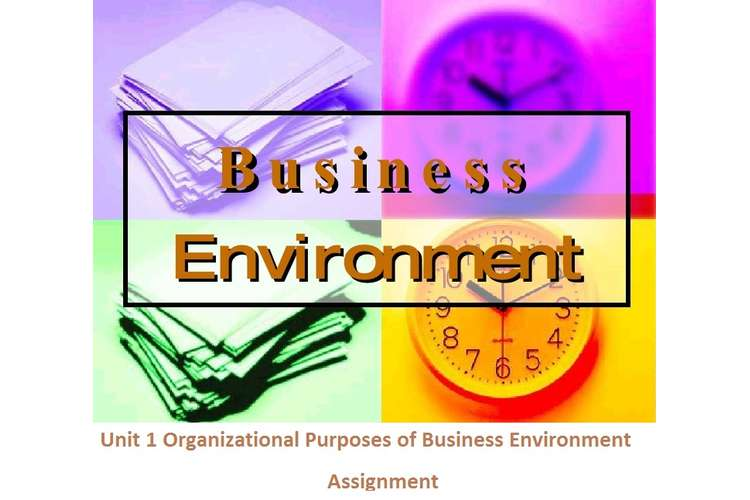 Unit 1 Organizational Purposes of Business Environment Assignment