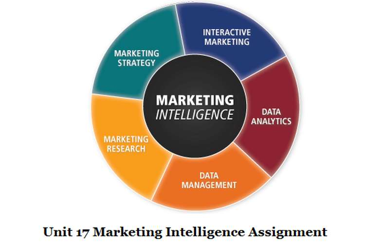 Unit 17 Marketing Intelligence Assignment