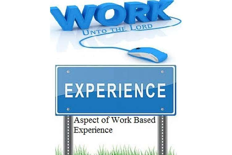 Work Based Experience Assignments Solution