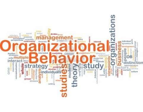 MGT202 Organizational Behavior Assignment