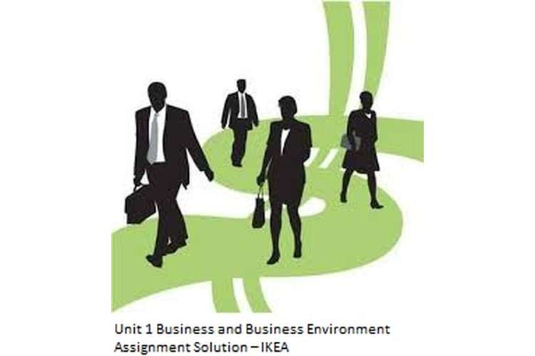 economic environment of business assignment answers Business environment- assignment 3 assignment 3- the impact on the economic environment the economy an entire network of producers, distributors, and consumers of goods and services in a local, regional, or national community.