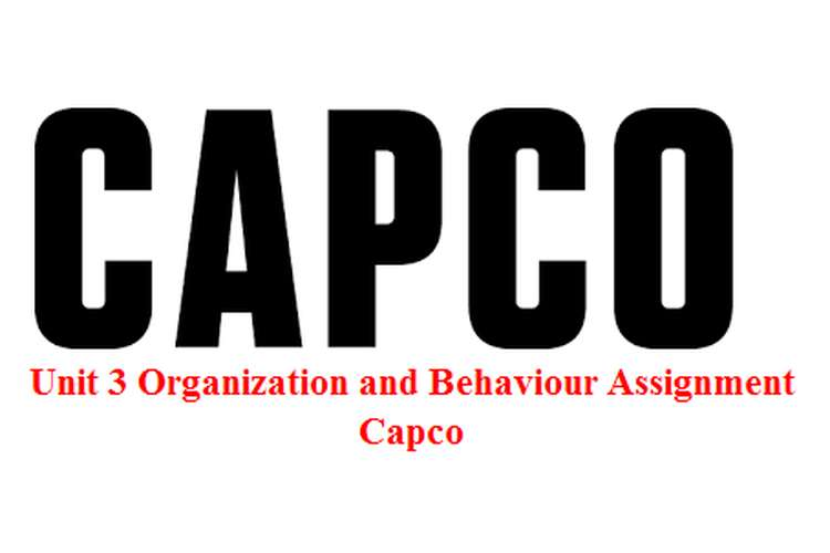 Unit 3 Organization and Behaviour Assignment - Capco