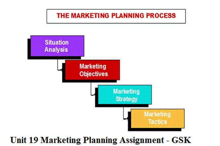 Unit 19 Marketing Planning Assignment - GSK