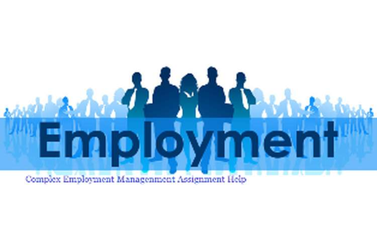 Complex Employment Management Assignment Help