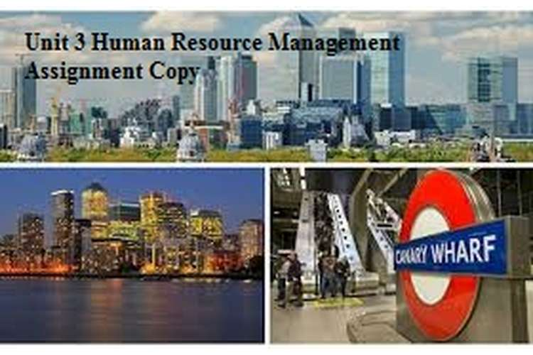 Unit 3 Human Resource Management Assignment Copy