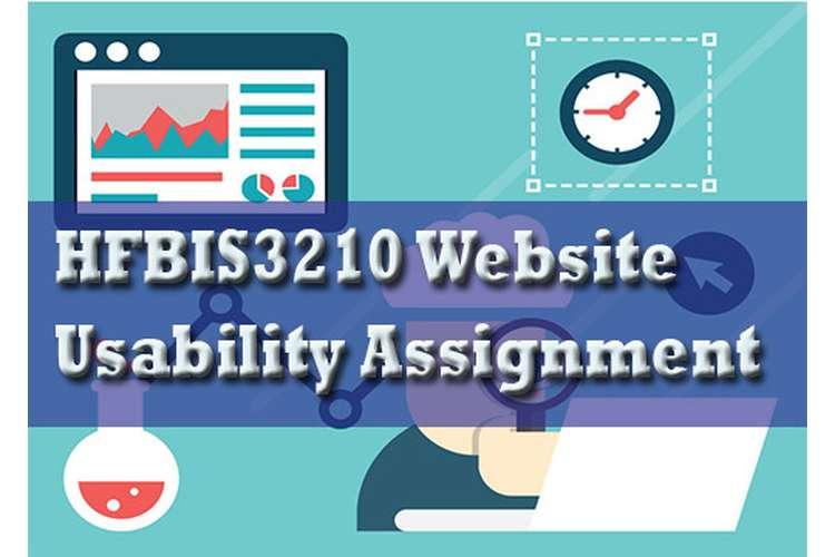 HFBIS3210 Website Usability Assignment