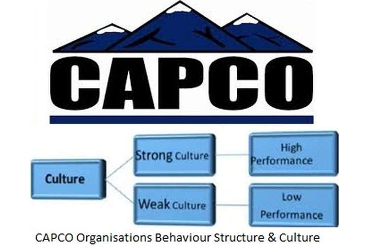 CAPCO Organisations Behaviour Structure & Culture Assignment