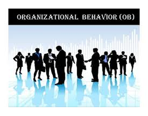 Organisational and Behaviour in Team Management Assignment