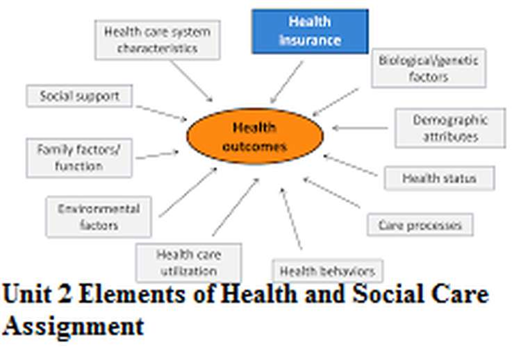 Unit 2 Elements of Health and Social Care Assignment