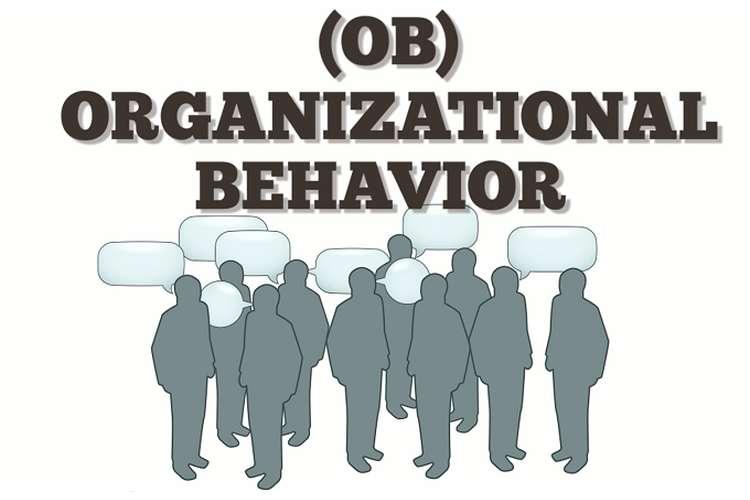 MGT202 Organizational Behavior Assignment Solutions