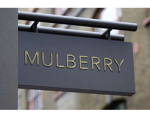Business Strategy Assignment - Mulberry Group PLC