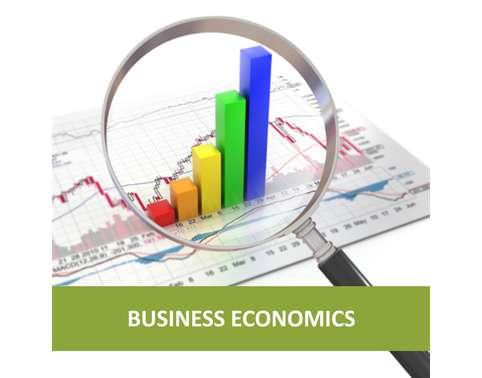 HI5003 Economics for Business Individual Assignment Help