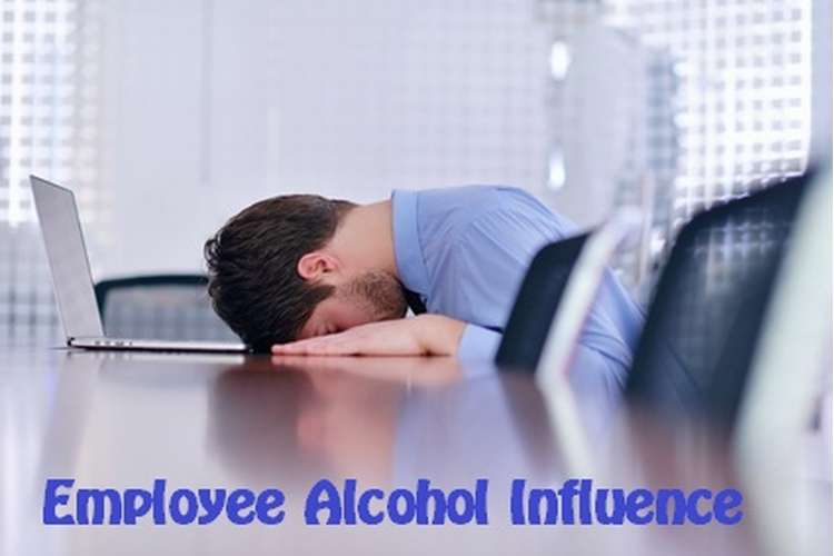 CHCECE019 Employee Alcohol Influence Assignment