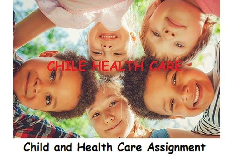 Child and Health Care Assignment