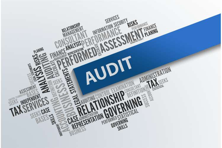 ACCT3005 Auditing Theory and Practice Assignment