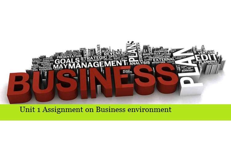 Assignment on Business environment