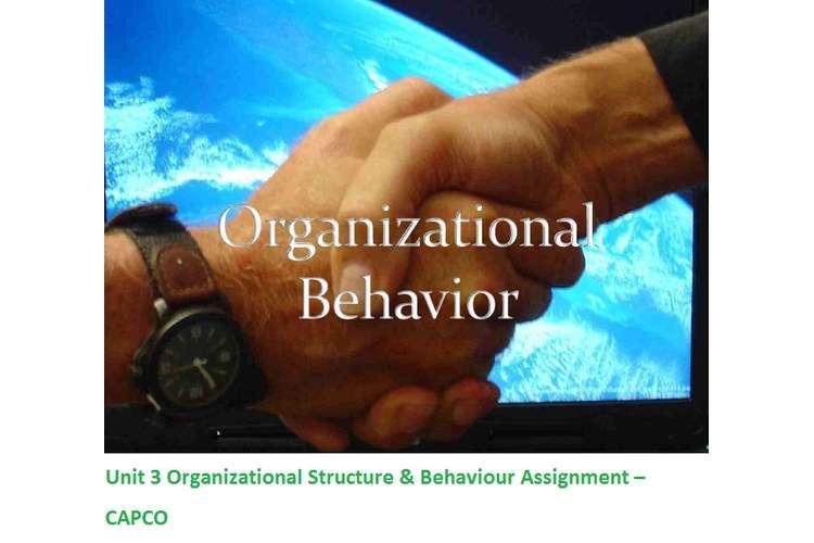 Unit 3 Organizational Structure & Behaviour Assignment – CAPCO