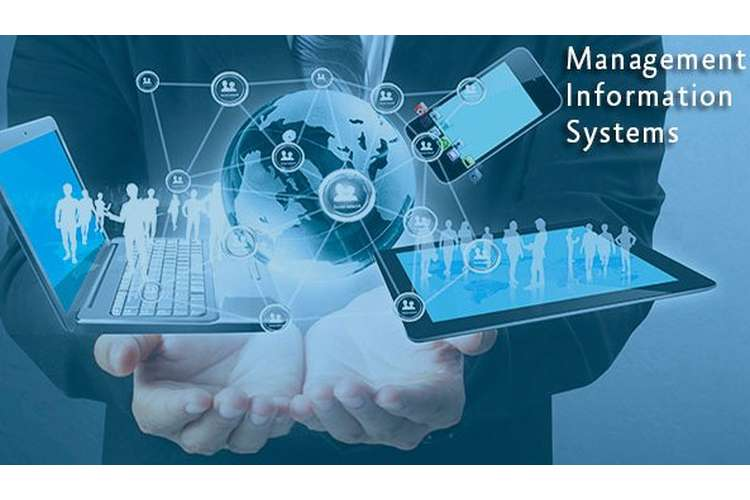 MIS101 Management Information Systems Assignment