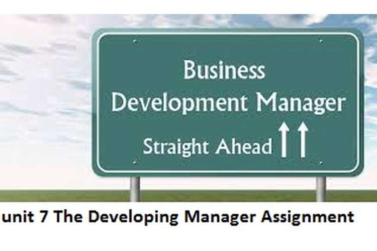 Unit 7 The Developing Manager Assignment Sample