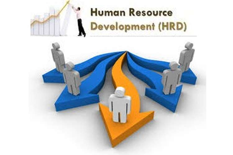 Human Resources Development Assignment