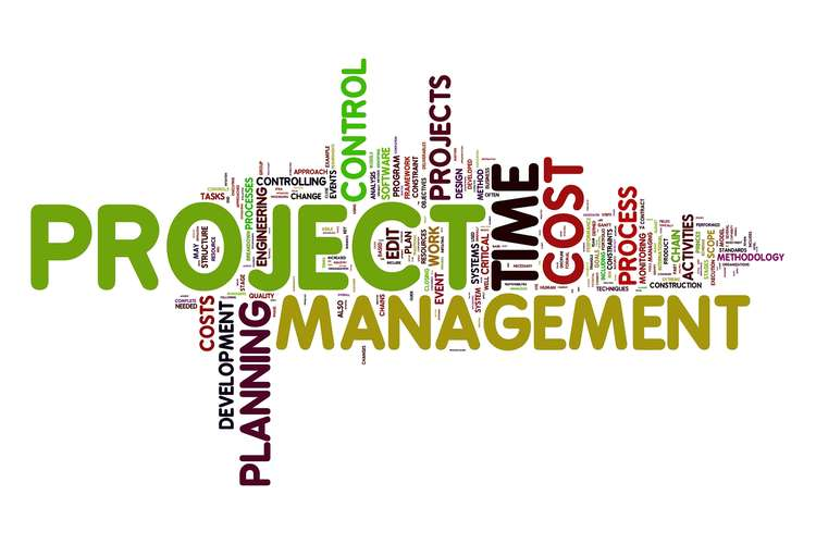 MGT 726 Managerial Project Assignment Help