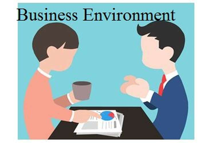 Unit 1 Essay on Business Environment Assignment
