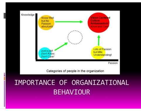 organizational buying behaviour essay