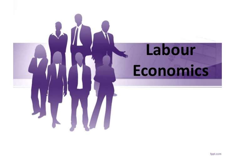 Labour Economics Oz Assignment Help
