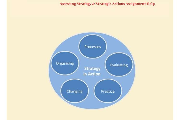 Assessing Strategy & Strategic Actions Assignment Help