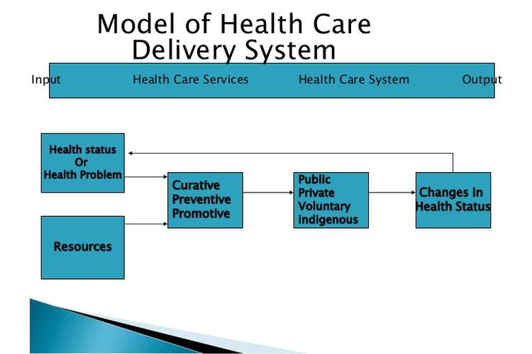 HTH325 Health Care Delivery Systems Oz Assignment