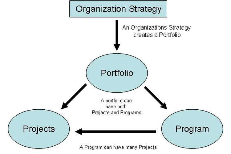 PPMP20012 Program and Portfolio Management Information Systems