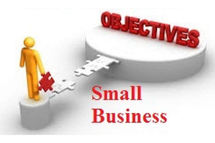 Unit 33 Objectives of Small Business Enterprise Assignment