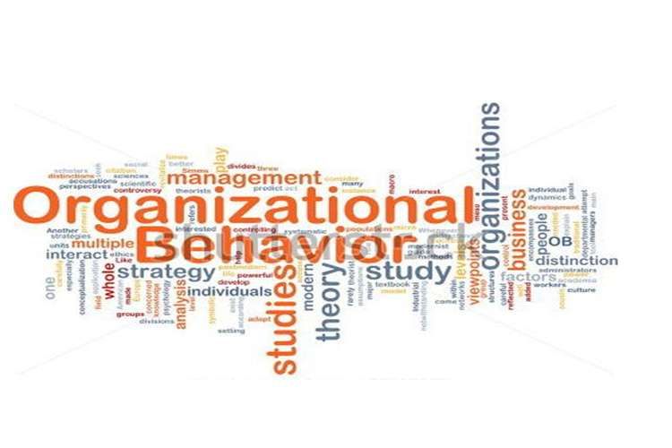 Unit 3 Organisational Behaviour Assignment Capco