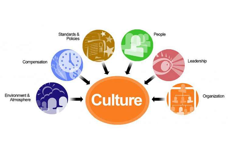 MSWPG7212 Organisational Culture and Management