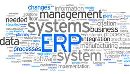 BCO6603 Enterprise Resource Planning Systems Assignment Help