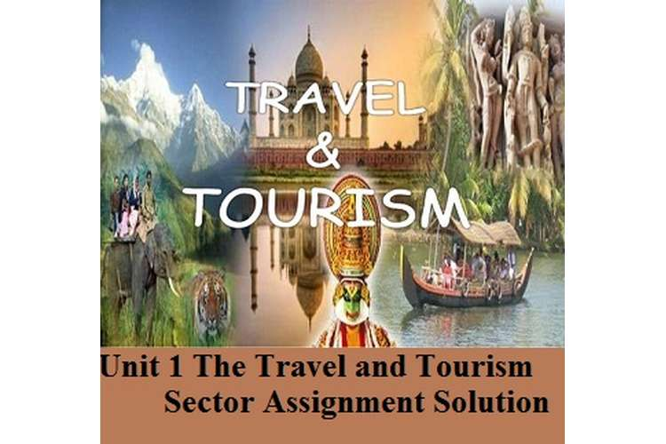 The Travel and Tourism Sector Assignment Solution
