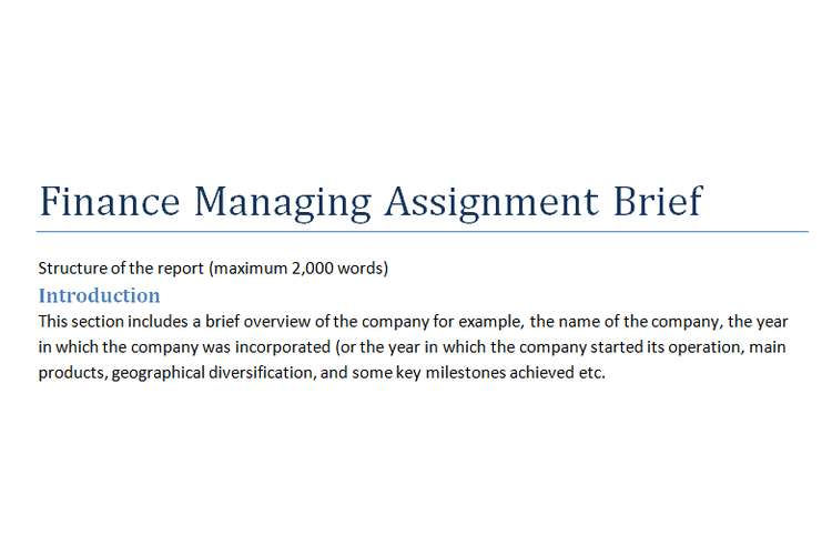 Finance Managing Assignment Brief