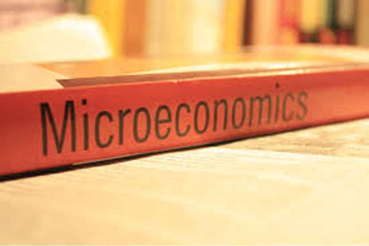 ECO101 Microeconomics Assignment