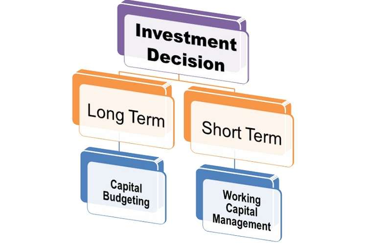 Capital Investment Decisions Oz Assignment