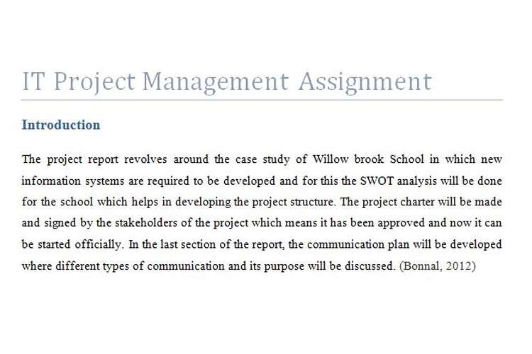 IT Project Management Assignment