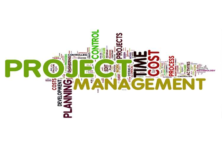 Project Management Report Oz Assignment