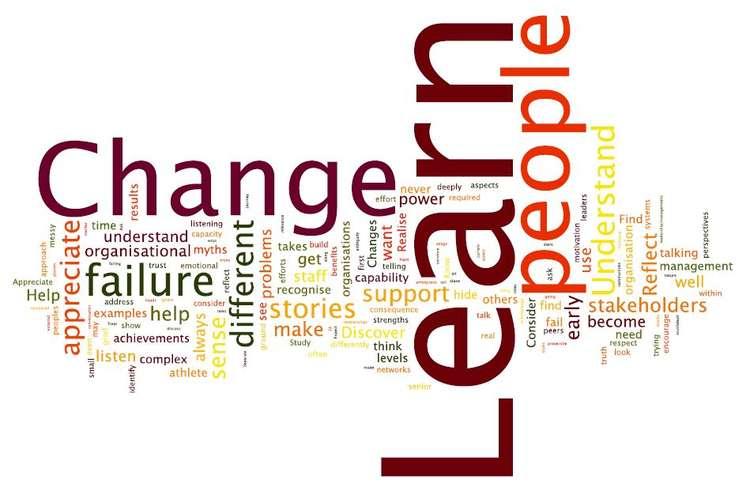 BSBINN601B Manage Organisational Change Assignment
