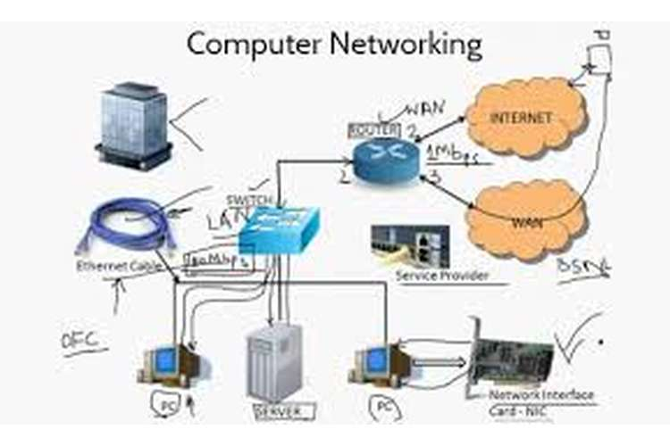 Network Design and Infrastructure Oz Assignments